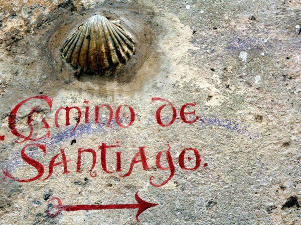 SANTIAGO CAMINO